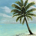 Palm Tree Study by Cecilia Brendel