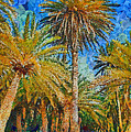 Palm Trees by George Rossidis