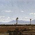 Palm Trees In Elche by Carlos de Haes
