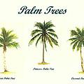 Palm Trees by Michael Vigliotti