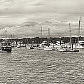 Palmetto Bay Marina Panorama by Bill LITTELL