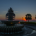 Palmetto Sunrise by Dale Powell