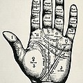 Palmistry. Planetary And Zodiacal by Everett