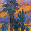 Palms And Sunset by Diane McClary