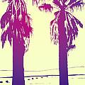 Palms by Giuseppe Cristiano