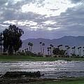 Palms Springs Flood by Chris Tarpening