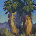 Palms With Skirts by Diane McClary