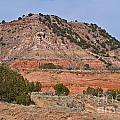 Palo Duro Canyon 040713.02 by Ashley M Conger
