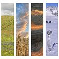 Palouse Seasons II by Doug Davidson