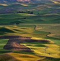 Palouse Shadows by Mike  Dawson