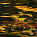 Palouse Sunset From Steptoe Butte by Priscilla Burgers