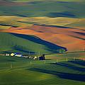 Palouse - Washington - Farms - 1 by Nikolyn McDonald