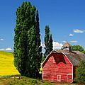 Palouse Weathered Barn by Inge Johnsson