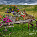 Palouse Welcome Wagon by Priscilla Burgers