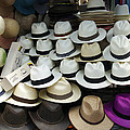 Panama Hats In Ecuador by Kurt Van Wagner