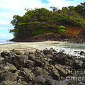Panama Island by Carey Chen