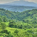 Panama Landscape by Heiko Koehrer-Wagner