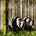 Pandas In A Bamboo Forest by Daniel Eskridge