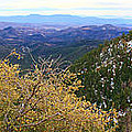 Panorama Emory Pass Vista Nm by Roena King