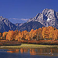Panorama Fall Morning Oxbow Bend Grand Tetons National Park Wyoming by Dave Welling