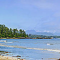Panorama Of Pacific Coast On Vancouver Island by Elena Elisseeva
