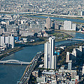 Panorama Of Tokyo by Jill Mitchell