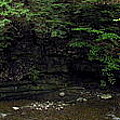 Panorama Of Wolf Creek At Letchworth State Park by Rose Santuci-Sofranko