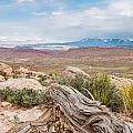 Panorama Point - La Sal Mountains - Arches National Park - Ut by Steve Lagreca