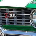 panoramic green Z28 by Mark Spearman