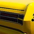 Panoramic Yellow Duster by Mark Spearman