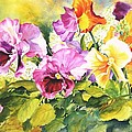 Pansies Delight #3 by Betty M M Wong