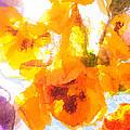 Pansy Flowers by Joe Mamer