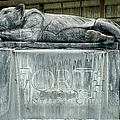Panther City Fountain by Joan Carroll