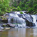 Panther Creek Falls by Barbara Bowen