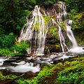 Panther Falls by Marcio Cabral