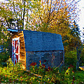 Papa's Old Barn by Michael DArienzo
