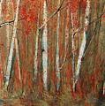 Paper Birch by Jani Freimann