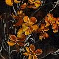 Paper Flowers by Jennifer Calhoun