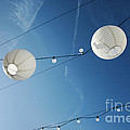 Paper Lanterns by Konstantin Sutyagin