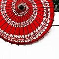 Paper Umbrella With Swirl Pattern On Fence by Amy Cicconi