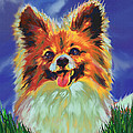 Papillion Puppy by Jane Schnetlage