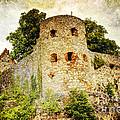 Pappenheim Castle by Heiko Koehrer-Wagner