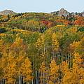 Paradise Autumn by Bill Sherrell