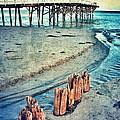 Paradise Cove Pier by Jill Battaglia