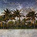 Paradise Found by Ellen Heaverlo