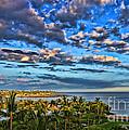 Paradise Is Nice By Diana Sainz by Diana Raquel Sainz