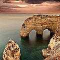 Paradise by Jorge Maia