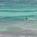Paradise Paddle Boarding by Lee Wilson