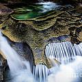 Paradise Rocks by Inge Johnsson