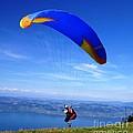 Paragliding by Cristina Stefan